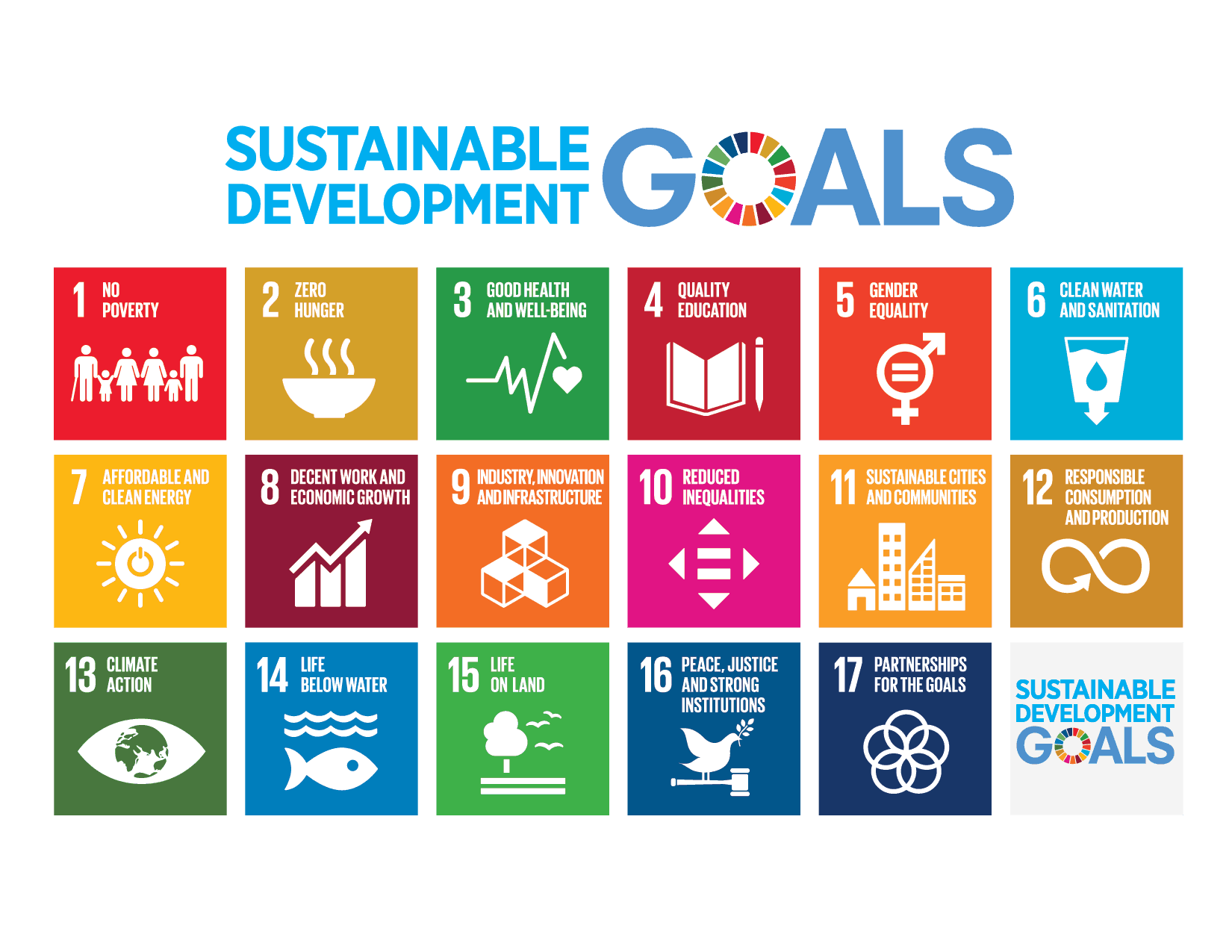 Our guide to incorporating the SDGs: Moving from theory to action